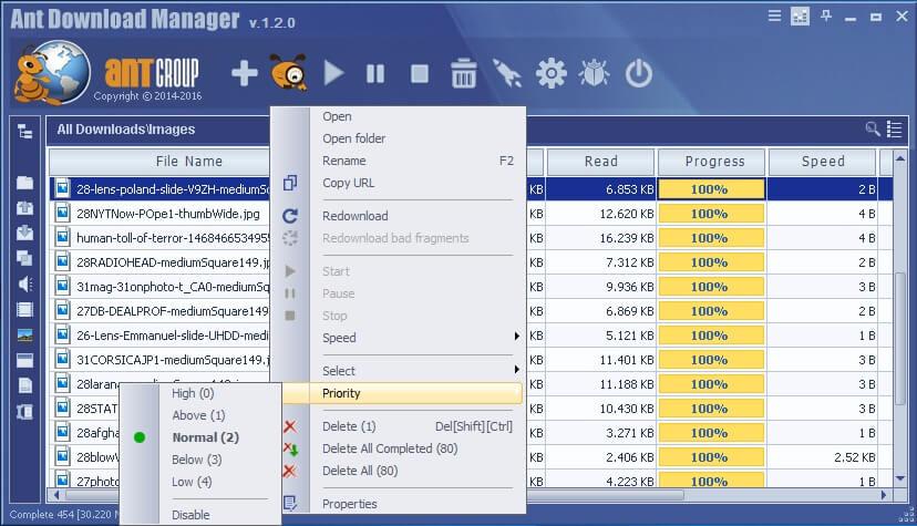 Ant Download Manager Pro Full Crack