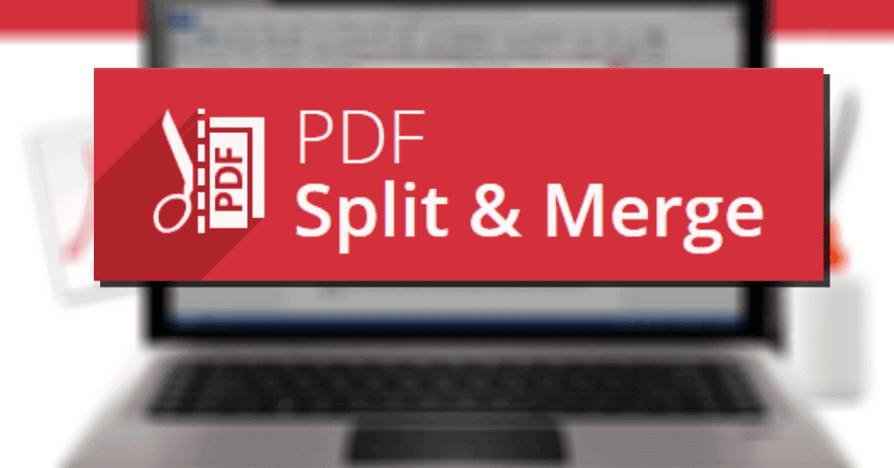 Icecream-PDF-Split-Merge-Pro-crack